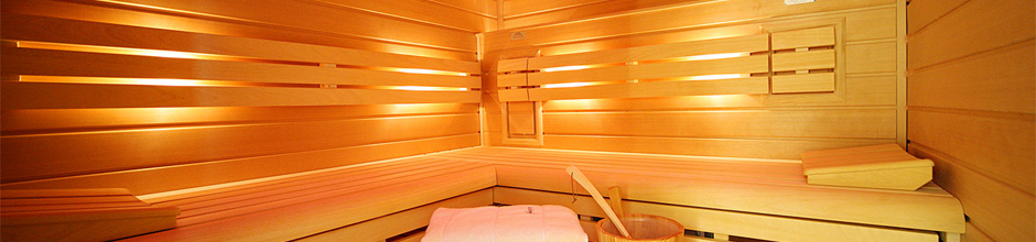 sauna pool shop der onlineshop rund um sauna. Black Bedroom Furniture Sets. Home Design Ideas